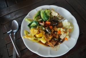 Vegan Lunch Elephant Nature Park